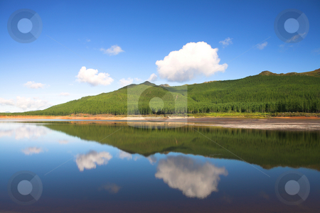 Reflections in the Nuweberg Dam, South Africa stock photo, Reflection of clouds and trees in water across the Nuweberg Dam in South Africa (actual reflection, no filters used) by Sean Nel