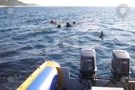 Scuba divers stock photo, Scuba divers about to be picked up by Sean Nel