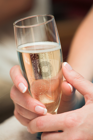 Glass of Champagne stock photo, Woman holding a glass of bubbly champagne by Sean Nel