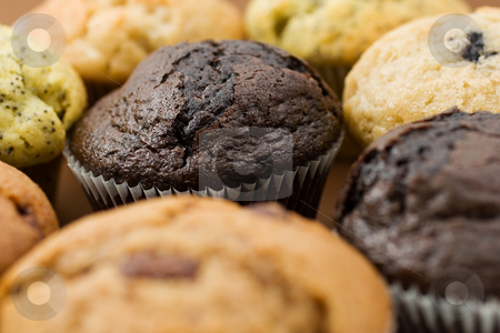 Food #11 stock photo, A Plate of muffins - chocolate muffin in focus - Shallow Depth of Field by Sean Nel