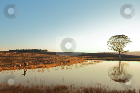 Flyfishing #27 stock photo, A fly fisherman casting a line in Dullstroom, South Africa by Sean Nel