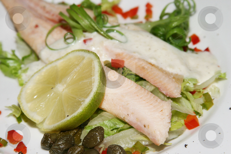 Salmon starter stock photo, Salmon and lemon starter dish by Sean Nel