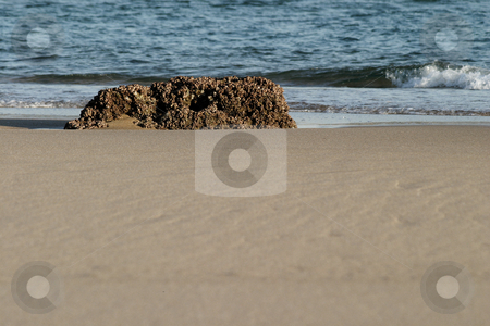 Rock on the beach stock photo, Rock on the beach in mozambique by Sean Nel