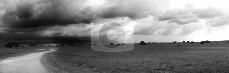 Panoramic nature reserve stock photo, Black and White Panorama of a large storm brewing in the South African Nature reserve of Rietvlei Dam - Rain makes the darker parts of the image appear grainy by Sean Nel