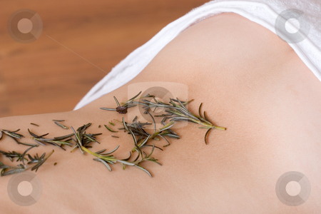 Massage #13 stock photo, Lavender twigs on clean naked back by Sean Nel