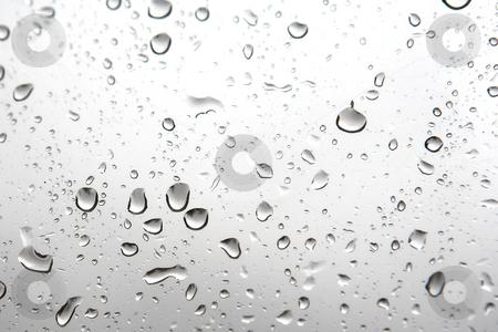 Waterdrops #1 stock photo, Waterdrops on a window by Sean Nel