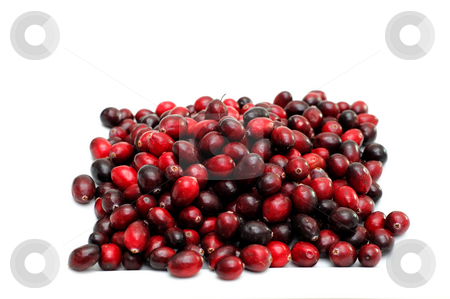 Isolated Cranberries stock photo, Cranberry fruits in various shades of red isolated on a white background by Lynn Bendickson