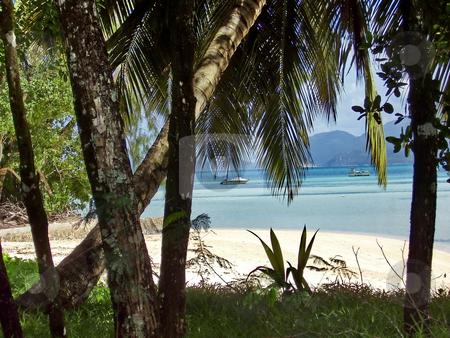 Beach on Seychelles stock photo, Beach on Seychelles by Sergey Gorodenskiy