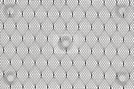 Black lace fabric pattern stock photo, Pattern of black lace fabric against white background by Marek Uliasz