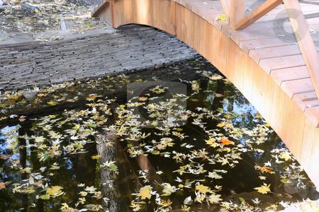 The bridge in park stock photo, The bridge in park through a quiet stream by Valerij Kotulskij