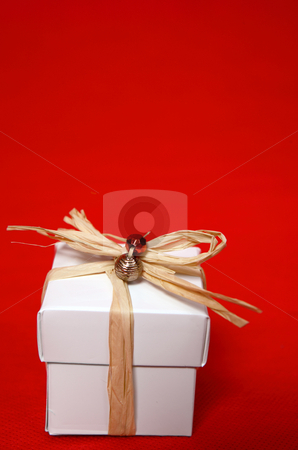 Pretty present stock photo, White box tied with raffia and decorated by Leah-Anne Thompson