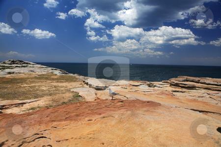 Coastal Landscape stock photo, Coastal landscape east coast of Australia by Leah-Anne Thompson