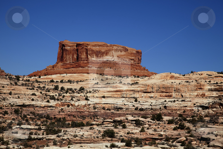 Canyonlands National Park stock photo, View of the red rock formations in  Canyonlands National Park with blue sky by Mark Smith