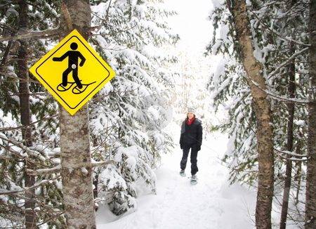 Winter hiking with Snowshoes stock photo, Snowshoes. Young woman snowshoeing in pine forest near Baie Saint-Paul, Quebec, Canada. by Maridav