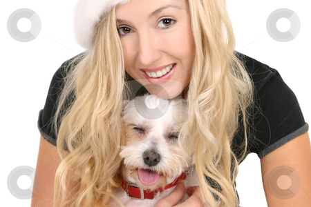 Puppy Love stock photo, Happy female cuddling a small white maltese terrier by Leah-Anne Thompson