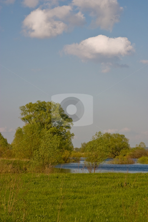 Spring forest stock photo, Nature series: spring forest and river by Gennady Kravetsky