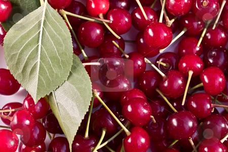 Cherries stock photo, Food series: tasty red cherries with leaf texture by Gennady Kravetsky