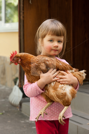 Girl and hen stock photo, People series: little girl with red hen by Gennady Kravetsky