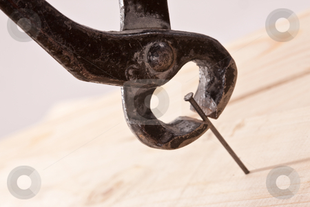 Naildrawer stock photo, Tools series: steel naildrawer and nail on wwoden plank by Gennady Kravetsky