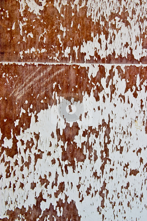 Veneer stock photo, Texture series: old styled white painted veneer by Gennady Kravetsky