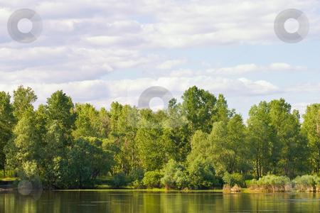 River landscape stock photo, Landscape series: river and forest under blue cloudy sky by Gennady Kravetsky