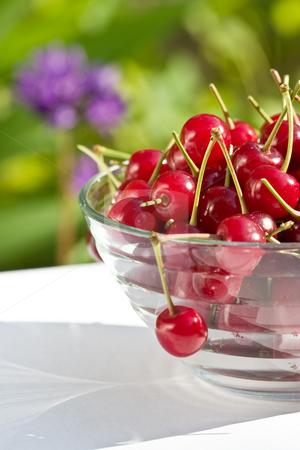 Red cherry stock photo, Food series: freshly grown tasty cherries on bowl by Gennady Kravetsky
