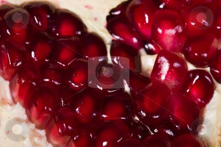 Pomegranate stock photo, Fruit series: ripe pomegranate on the red background by Gennady Kravetsky