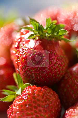 Strawberry stock photo, Food series: freshly grown tasty strawberry on plate by Gennady Kravetsky