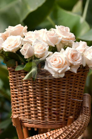 Bunch of flowers stock photo, Flower series: bunch white roses, romantic mood by Gennady Kravetsky