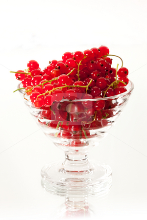 Red currant stock photo, Food series: full glassy bowl of red currant by Gennady Kravetsky