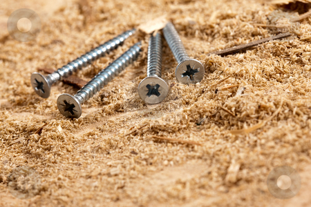 Nail stock photo, Tools series: long nails on sawdust table by Gennady Kravetsky