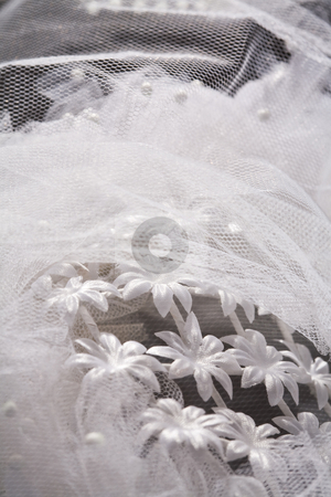Lace stock photo, Macro picture of lace on the wedding dress by Gennady Kravetsky