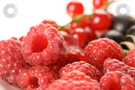 Raspberry and currant  stock photo, Macro picture of raspberry and currant on the by Gennady Kravetsky