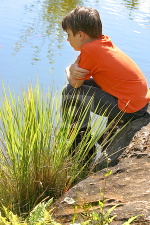 Child watching fish stock photo, A boy watches fish swimming in the lake by Leah-Anne Thompson
