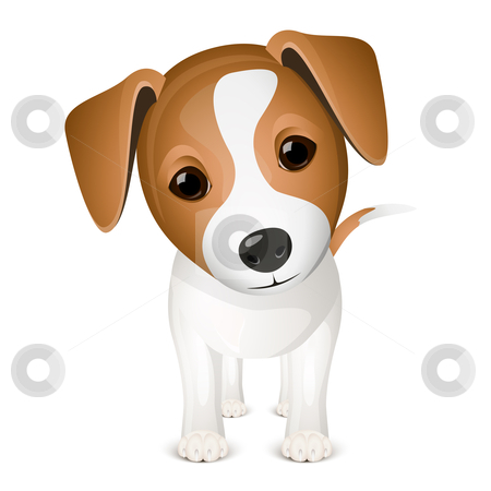 Little jack russel stock vector clipart, Little jack russel isolated on white background by Laurent Renault