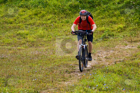 Cyclist riding on the mountain bike stock photo, Cyclist riding on the mountain bike on the grass by Tatsiana Amelina