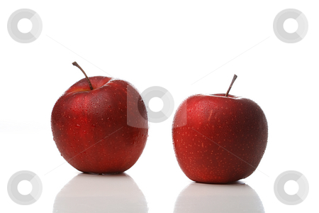 Waterdrops on an apple stock photo, Two red apples with waterdrops isolated on white background by Alexander Zschach