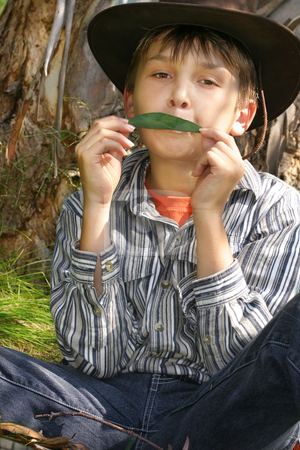 Green Music - A Boy playing gumleaf tune stock photo, Green Eco-Music - A boy holds a simple gum leaf against the lips and blown so as to act as a vibrating valve. When played seriously the gum leaf is capable of complex and highly expressive music. It has been mistaken for a whistle, flute, clarinet, saxophone, trumpet, violin, and female voice..  To hear a gumleaf go here