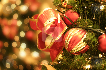 Christmas  stock photo, Christmas tree and lights by Leah-Anne Thompson