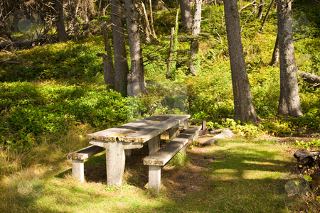 Picnic Table in Forks Washington stock photo, Picnic spot at La Push beach in Forks, Washington. by Travis Manley