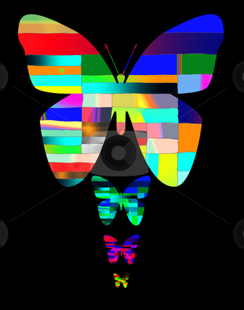 Variegated Butterfly (concept illustration) stock photo,  by W. Paul Thomas