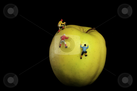 Apple stock photo, Yellow apple and little climbers on black background by Marina Magri