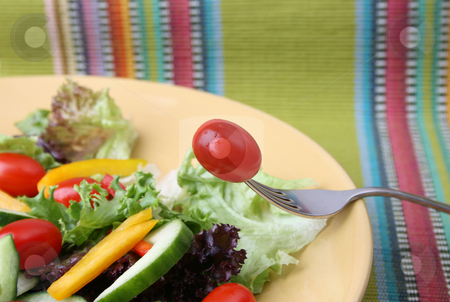 Tomato on Fork stock photo, Fresh colorful salad with cherrie tamatoes and cucumber by Vanessa Van Rensburg