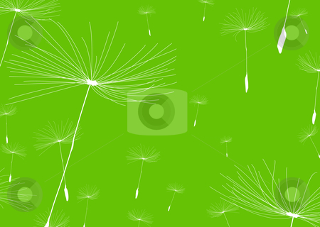 Dandelion negative stock vector clipart, Green nature background with white dandelions and copy space by Michael Travers