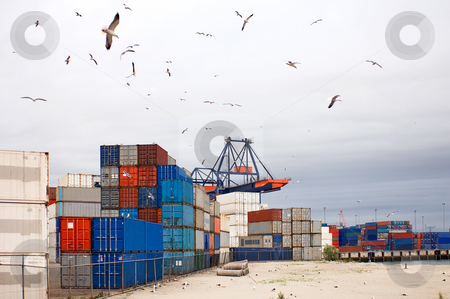 Container storage stock photo, Container storage with stacks of containers at an industrial harbor, surrounded by seagulls flying overhead by Corepics VOF