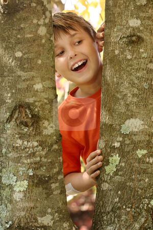 Smile, the air is fresh and pure stock photo, A young laughing boy looking through the bough of a tree covered in lichens.Lichens serve as indicators of air pollution. In places of heavy pollution, few to no lichens are found. Lichen populations increase gradually with distance from these polluted places and are used in ecological studies as a measure of pollution intensity. Lichens are therefore excellent bioindicators and biomonitors by Leah-Anne Thompson