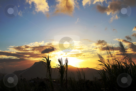 Sunset cloudscape stock photo, Image of dramatic cloudscape at sunset over mountain behind sugarcane plants on the island of Mauritius. by Gowtum Bachoo