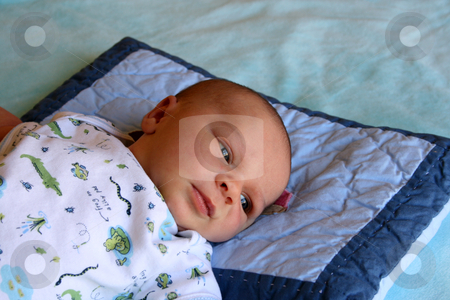 Boy stock photo, Week old baby boy on a blue blanket early in the morning by Vanessa Van Rensburg