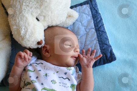 Wrinkled Hand stock photo, Week old baby boy on a blue blanket early in the morning by Vanessa Van Rensburg