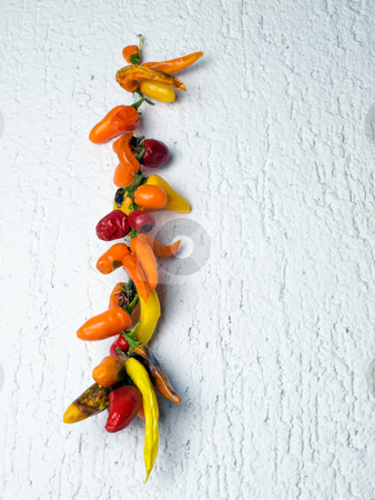 Dried peppers stock photo, Different kinds of dried peppers hanging on the wall. by Sinisa Botas